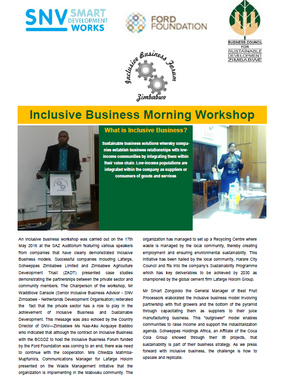 IB activities taking place in Zimbabwe - BCSDZ News