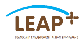 Zimbabwean IB Organisations take part in SNV's LEAP+ workshop