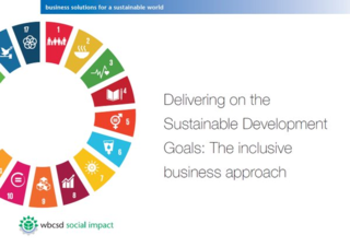 Delivering on the Sustainable Development Goals: The inclusive business approach