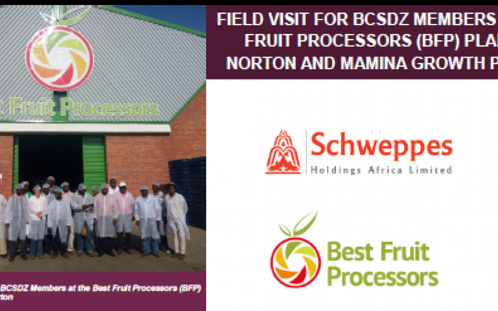 IB in Zimbabwe: Best Fruit Processors partner with Mamina Irrigation Scheme