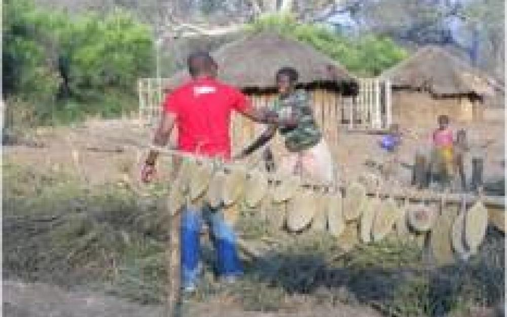Eco-MICAIA Limitada - Baobab Products in Mozambique