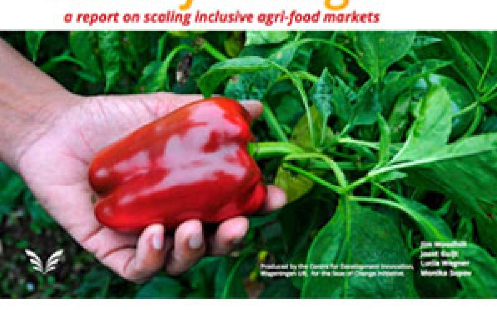 Report on Scaling Inclusive Agri-food Markets